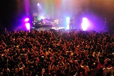 超満員の観客の盛り上がりで、横浜BLITZの中は年末とは思えない熱気に包まれた。