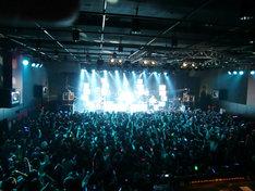 写真は1月11日の名古屋CLUB DIAMOND HALL公演の様子。会場は大勢のファンで埋めつくされた。