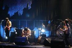 「いい音楽を作って、札幌から全国に発信して行きたい」と語ったメンバーたち。MCでは年内に新作をリリースすることを観客に約束しており、次回作ではツアーで得た経験を生かしたサウンドが期待できそうだ。