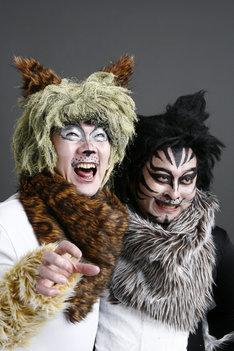 どこか見覚えのある猫に扮した掟ポルシェ(写真左)とロマン優光(右)。ちなみにカバー曲「ワルのテーマ」は、彼らが敬愛する作家/空手家の真樹日佐夫が原作を担当した映画「非情学園ワル」の主題歌。