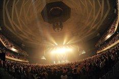 武道館ライブの模様はDVD化され、初夏にリリース予定。詳細は後日発表される。(写真:古溪一道)