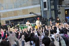 ステージ上のメンバーのみならず会場に集まった観客も、久しぶりのライブを全身で満喫。