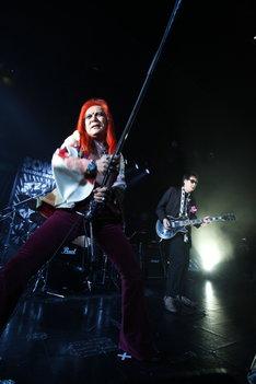 サンハウスは7月30日、「FUJI ROCK FESTIVAL '10」に出演することも決定(Photo by MAX TAKAHASHI)。