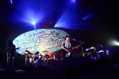 ナタリーでは後日、「SAKANAQUARIUM 2010 kikUUiki」最終公演のライブレポートを掲載予定(写真は本日5月28日のライブの様子)。