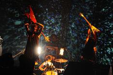 写真は音源化&映像化される「JAPAN TOUR 2010 2nd STAGE」ファイナル公演の模様。