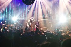新旧取り混ぜたセットリストでバンドの集大成とも言えるステージを披露したミドリ。(写真:五十嵐絢也)