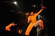 ライブの最後の曲「就職しやがれ!」を演奏するグループ魂。この日も最後は赤い紐パンになった港カヲル(写真左)と、それを見守る暴動(写真中央、破壊の左足の下)。