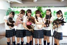 「AKB48 ネ申テレビ シーズン8」Vol.1「センター選手犬」より。写真左から峯岸みなみ、岩佐美咲、藤江れいな、仁藤萌乃、近野莉菜、平嶋夏海。