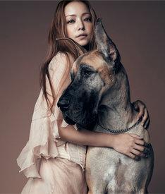 安室奈美恵は12月21日にライブDVD / Blu-ray「namie amuro LIVE STYLE 2011」の発売も決定している。