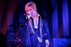 「HALLOWEEN PARTY 2011」神戸公演初日のAcid Black Cherry。