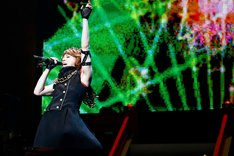 「T.M.R. NEW YEAR PARTY '12 LIVE REVOLUTION」の模様。