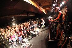 集まった300人のファンは至近距離での4人のステージを堪能した(撮影:マサノリ[LIVEPHOTOBANK])。