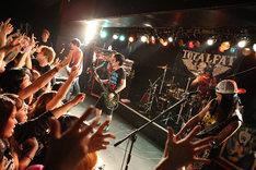 写真は4月6日のライブの模様(撮影:マサノリ[LIVEPHOTOBANK])。