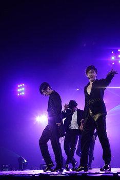 写真は「LIVE TOUR 2012~TONE~」最終公演の様子。