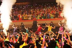 客席に飛び込んでのパフォーマンスに周囲の観客は大興奮。(photo by hajime kamiiisaka)