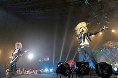 """""""モンスターバンド""""の仮装で熱演を繰り広げたAcid Black Cherry。(撮影:今元秀明、田中和子)"""