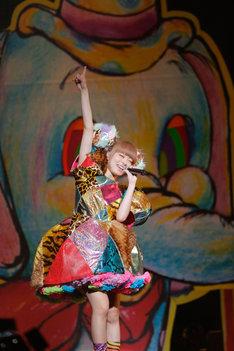 11月6日に東京・日本武道館で行われたきゃりーのワンマンライブの様子。(撮影:上飯坂一)
