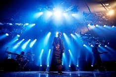 「acid android live 2012」ツアーファイナルの様子。(撮影:岡田貴之)