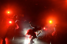 12月20日に行われたBABYMETAL赤坂BLITZ公演の様子(Photo by Taku Fujii)。