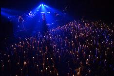 12月30日に行われれた「J LIVE 2012 LAST SHOWS -DOUBLE INFERNO-」の様子。