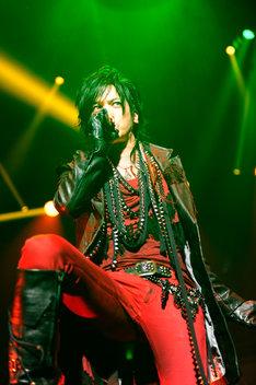 DAIGOは「チェリーチェリー」の曲中に桑田佳祐のモノマネを披露した。