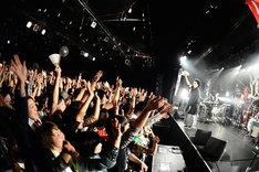 写真は1月11日のLIQUIDROOM ebisu公演の模様。