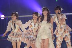 梅田彩佳、大島優子、河西智美、宮澤佐江(左から) (C)AKS