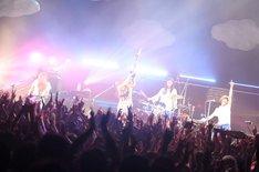 ねごと「お口ポカーン!! 東名阪ワンマンツアー ~spark of FLOWER~」Zepp Tokyo公演の様子。