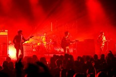 """「new balance presents NICO Touches the Walls TOUR 2013""""Shout to the Walls!""""」NHKホール公演の様子。(撮影:上飯坂一)"""