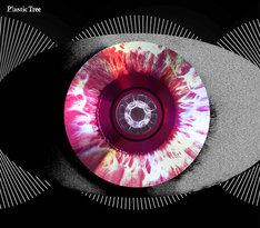 Plastic Tree「瞳孔」初回限定盤Aジャケット