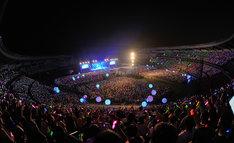 会場はザイロバンドの光とチームラボボールで彩られた。(撮影:古渓一道)