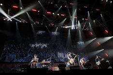 """「斉藤和義 20th Anniversary Live 1993-2013 """"20<21"""" ~ これからもヨロチクビ ~」さいたまスーパーアリーナ公演の様子。"""