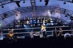 本日9月14日に神奈川・横浜スタジアムで行われたASIAN KUNG-FU GENERATION「ASIAN KUNG-FU GENERATION デビュー10周年記念ライブ ファン感謝祭」の様子。