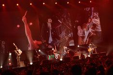 "BUMP OF CHICKEN「BUMP OF CHICKEN 2013 TOUR ""WILLPOLIS""」本日10月29日の東京・日本武道館公演の様子。(撮影:古渓一道)"