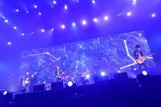 "BUMP OF CHICKEN「BUMP OF CHICKEN 2013 TOUR ""WILLPOLIS""」東京・日本武道館公演の様子。(撮影:古渓一道)"