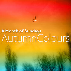 A Month of Sundays「Autumn Colours E.P.」配信ジャケット