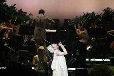「星空のライヴ VII -15th Celebration- Hoshizora Symphony Orchestra」日本武道館公演の様子。