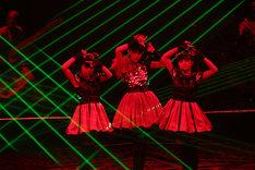 """東京・日本武道館2DAYS公演の2日目「黒い夜 LEGEND """"DOOMSDAY"""" ~召喚の儀~」の様子。(Photo by Taku Fujii)"""