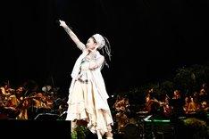 「星空のライヴ VII -15th Celebration- Hoshizora Symphony Orchestra」の様子。