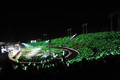有安杏果の誕生日を祝し、緑のサイリウム一色に染まる国立競技場。