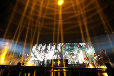 DIR EN GREY「DUM SPIRO SPERO」3月9日公演の様子。(撮影:尾形隆夫)