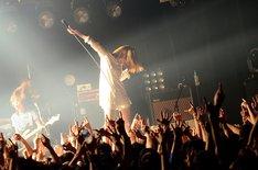 tricot「帰ってきたトリコさん」東京・赤坂BLITZ公演の様子。(Photo by Ohagi)