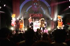 くりかまきワンマンライブ「ボクらの熊魂2014~この桜吹雪が目に入らぬか編~」で新メンバーAYUMIとパフォーマンスする様子。
