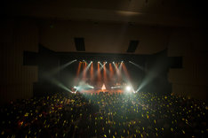 中島愛「Megumi Nakajima FINAL LIVE 『Thank You』」の様子。一面黄色いサイリウムで埋め尽くされた日本青年館。