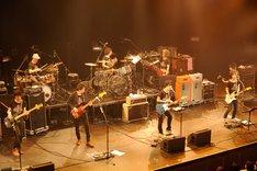 4月11日に行われた「DINOSAUR ROCK'N ROLL 6」でのTRICERATOPSとGRAPEVINEのコラボステージ。(撮影:松木雄一)