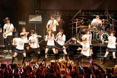 「One Night Carnival」をセッションする氣志團と乃木坂46。