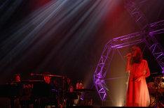 SawanoHiroyuki[nZk]:Aimer「UnChild」東京公演の様子。
