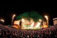 昨年10月に山梨・富士急ハイランド?にて開催された「炎と森のカーニバル」のライブの様子。