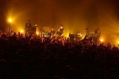 the HIATUS「Keeper Of The Flame Tour 2014」新木場STUDIO COAST公演の様子。