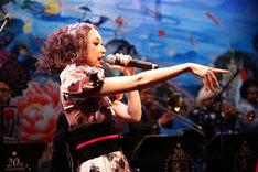 昨日8月11日に行われた「丸山敬太20周年祭『丸山景観』全集大成展」開催記念パーティでの野宮真貴。